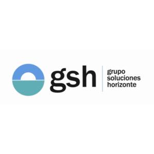 GSH 1